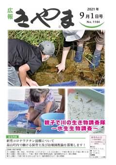 親子で川の生き物調査隊の写真